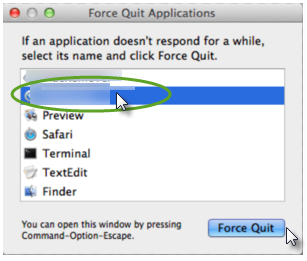 force quit process